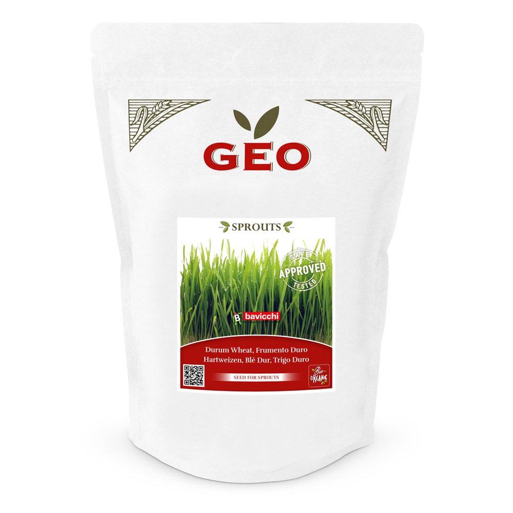 Keimsaaten Weizengras 600 g
