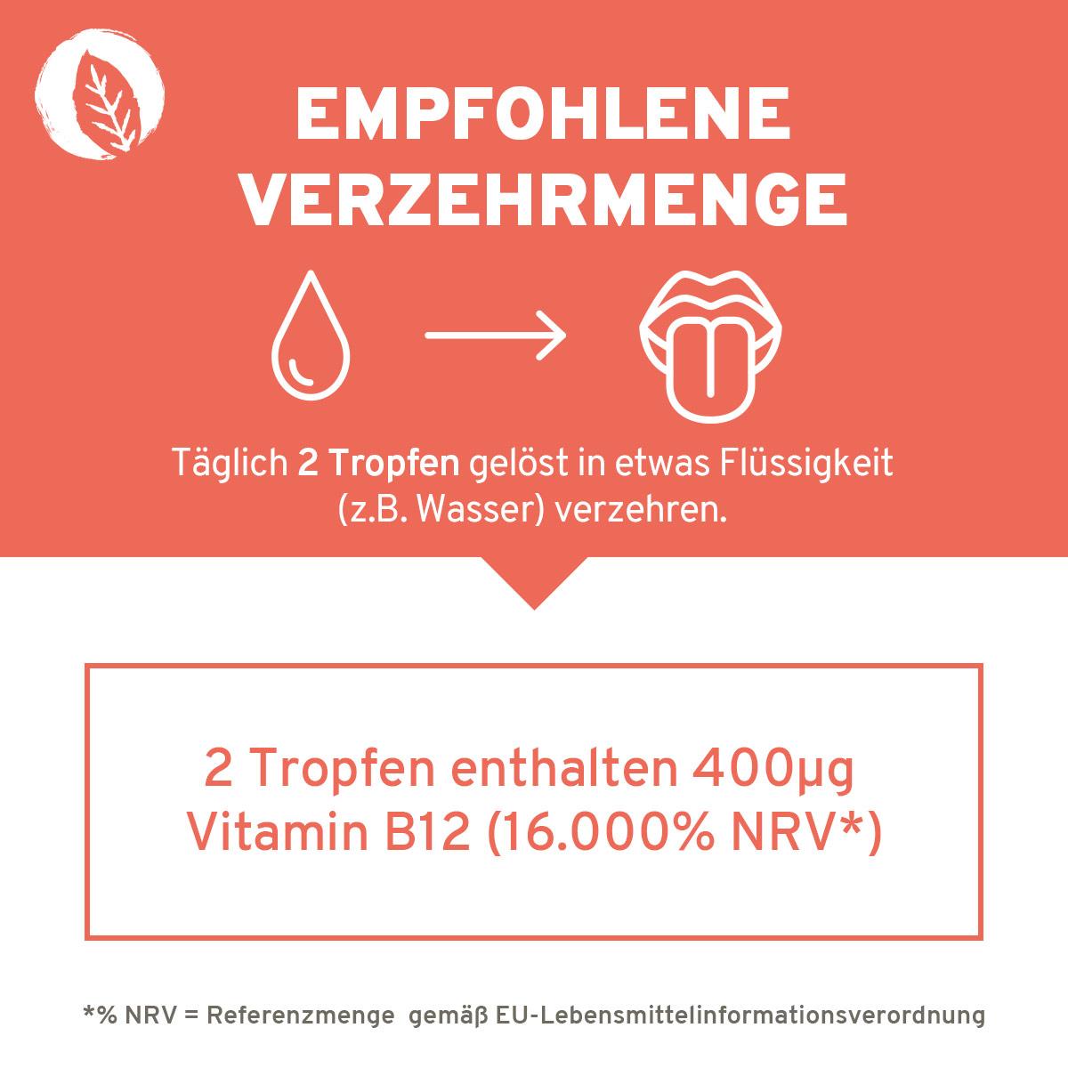 InnoNature Methylcobalamin Vitamin B12 Tropfen Verzehrempfehlung