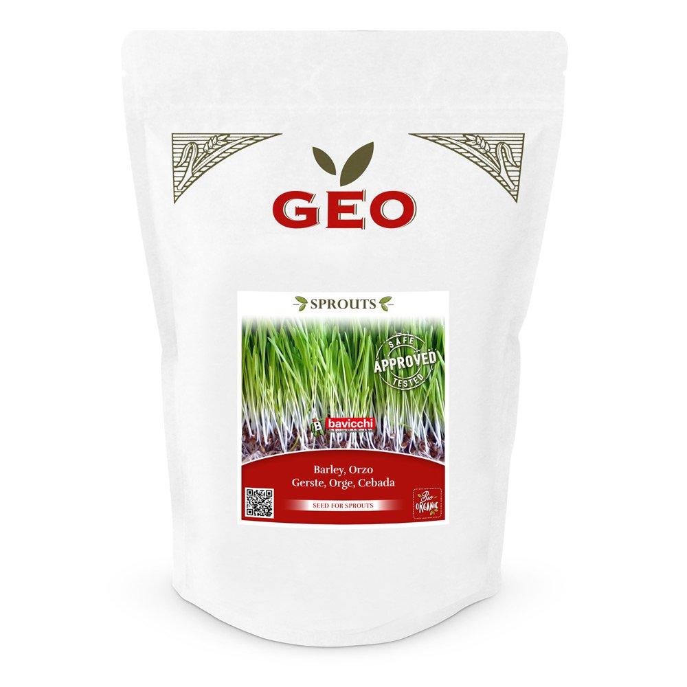 Geo Sprouts Gerstengras Keimsaaten